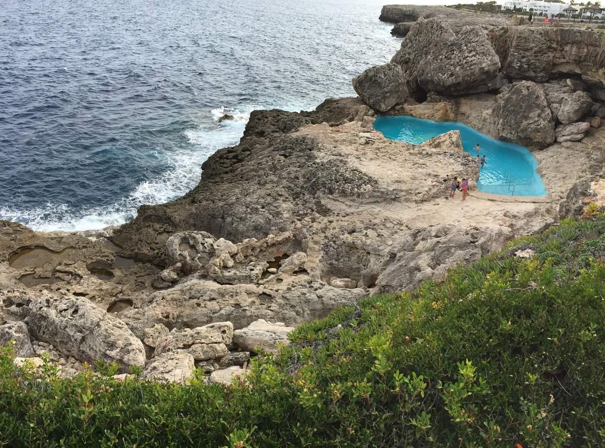 Formation piscine naturelle