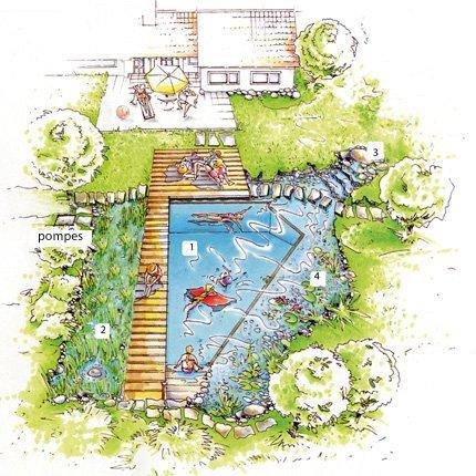 Plan de piscine naturelle