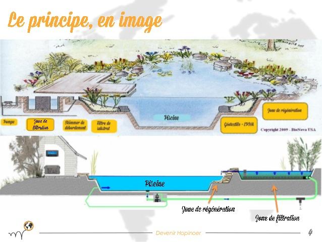 Construction bassin naturel de baignade maison parallele - Autoconstruction piscine naturelle ...