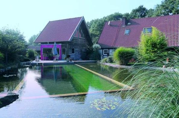 Maison au naturel maison parallele - Combien coute une piscine naturelle ...