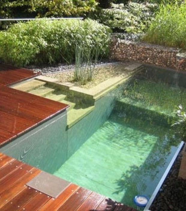 transformer piscine en bassin naturel maison parallele. Black Bedroom Furniture Sets. Home Design Ideas