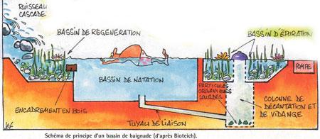 Piscine Naturelle Autoconstruction Prix Maison Parallele - Prix piscine naturelle autoconstruction