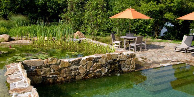 Photo piscine naturelle