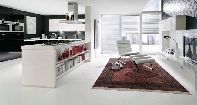 cuisine ouverte salon 30m2